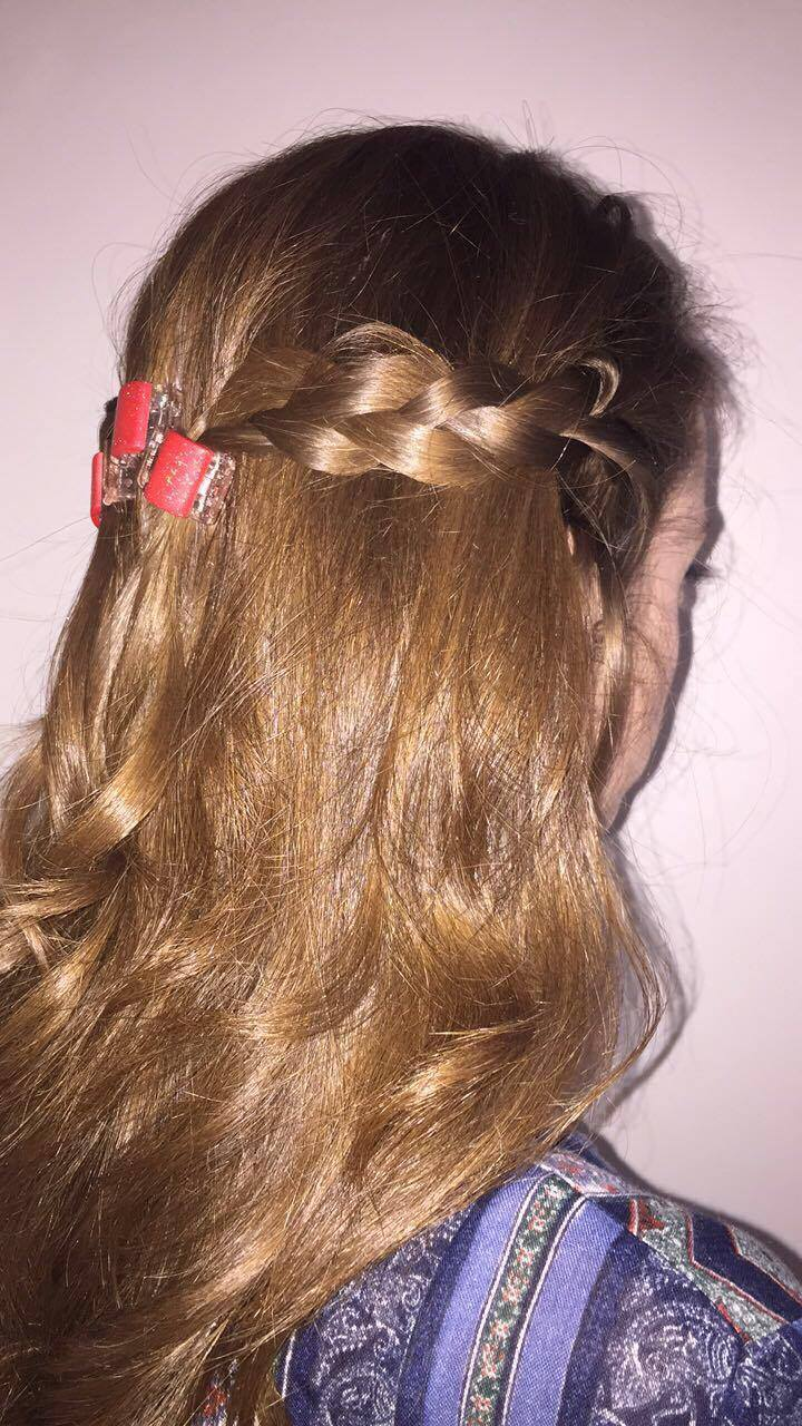 Everyday Hairstyles with Linzi Clips : Review